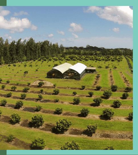 home within farmland
